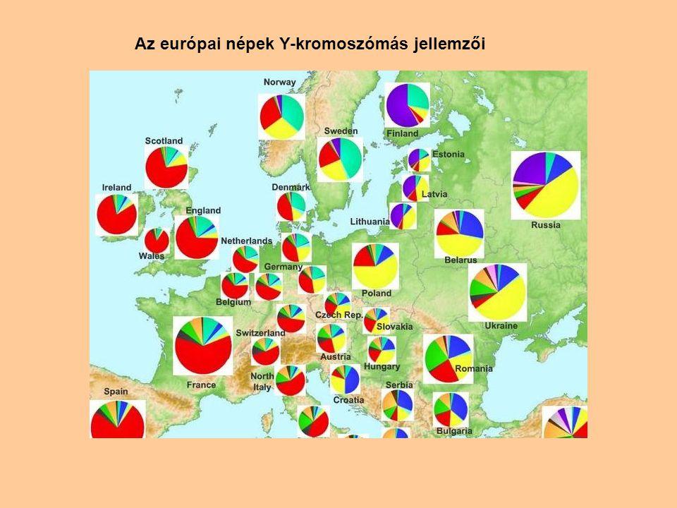Az európai népek Y-kromoszómás jellemzői