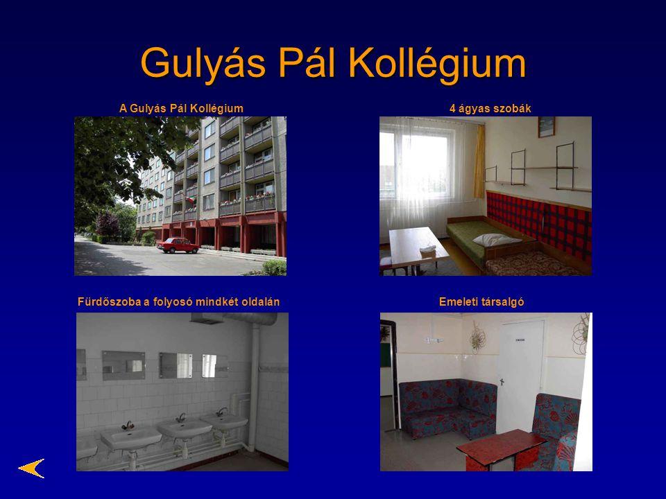 Gulyás Pál Kollégium A Gulyás Pál Kollégium 4 ágyas szobák