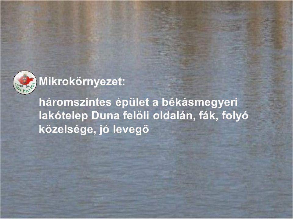 Mikrokörnyezet: háromszintes épület a békásmegyeri lakótelep Duna felöli oldalán, fák, folyó közelsége, jó levegő.