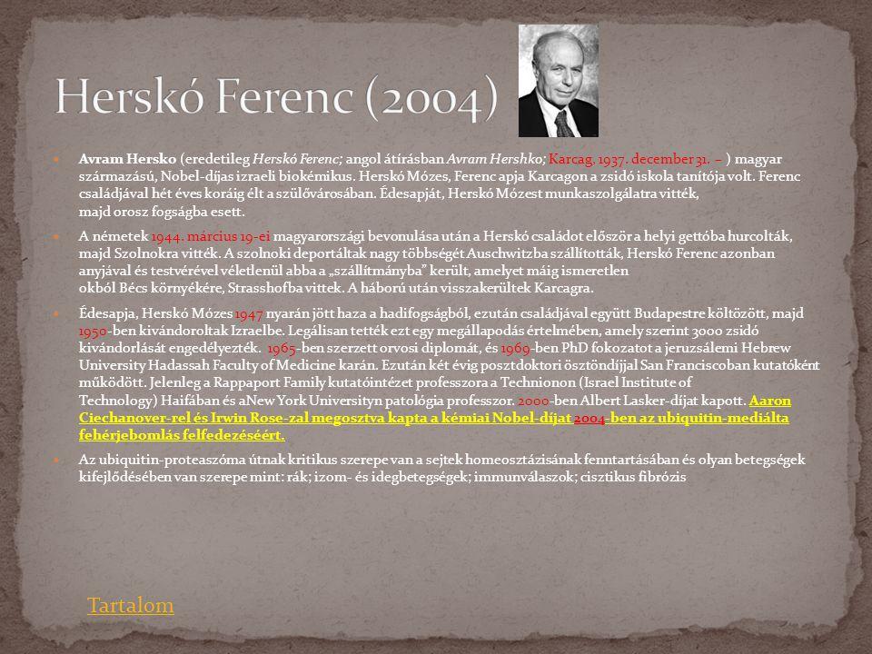 Herskó Ferenc (2004) Tartalom