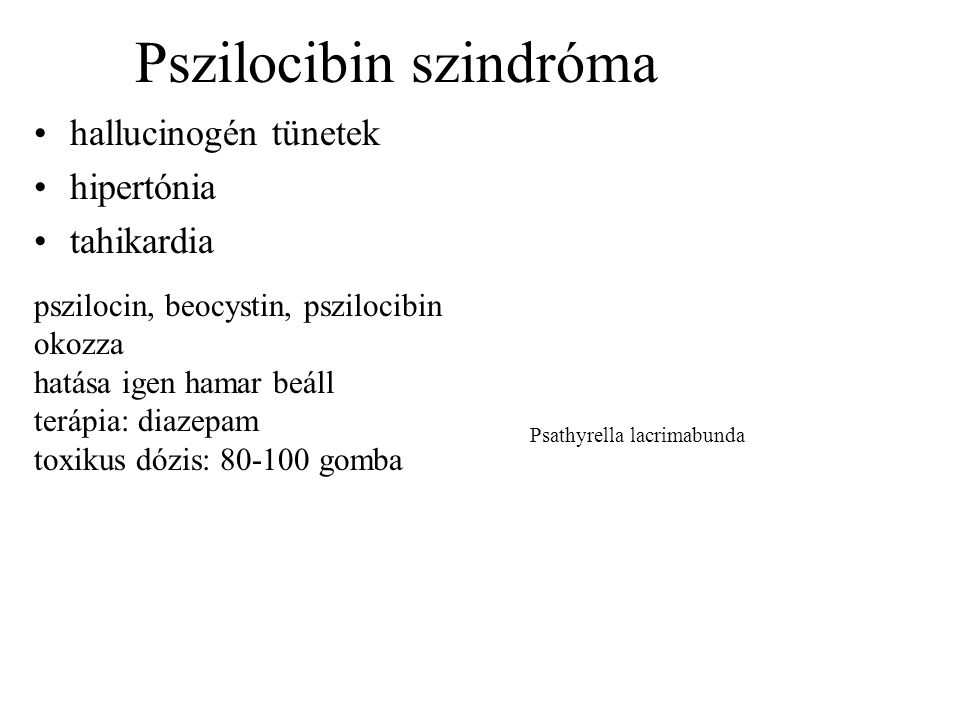 Pszilocibin szindróma
