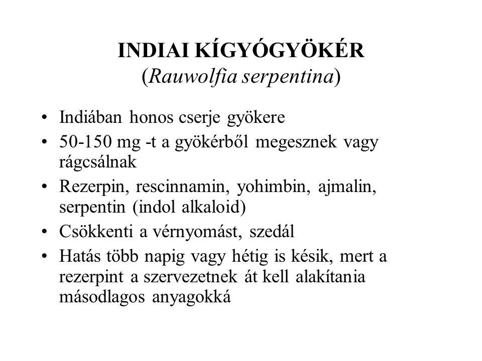 INDIAI KÍGYÓGYÖKÉR (Rauwolfia serpentina)