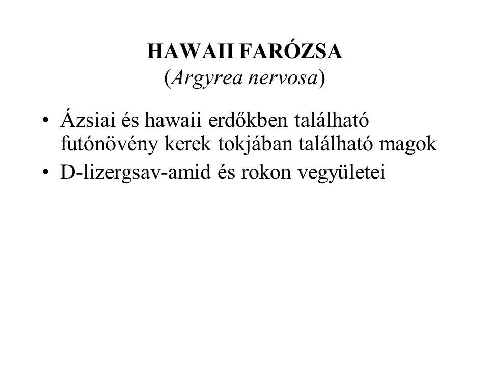 HAWAII FARÓZSA (Argyrea nervosa)