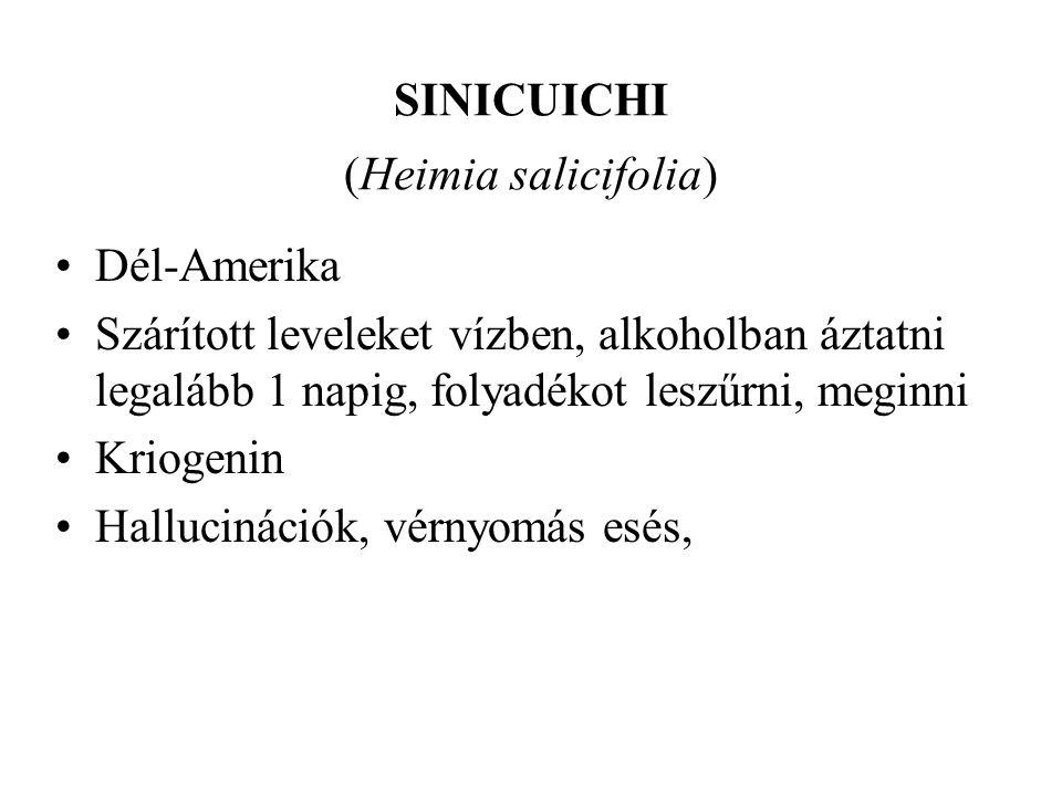 SINICUICHI (Heimia salicifolia)