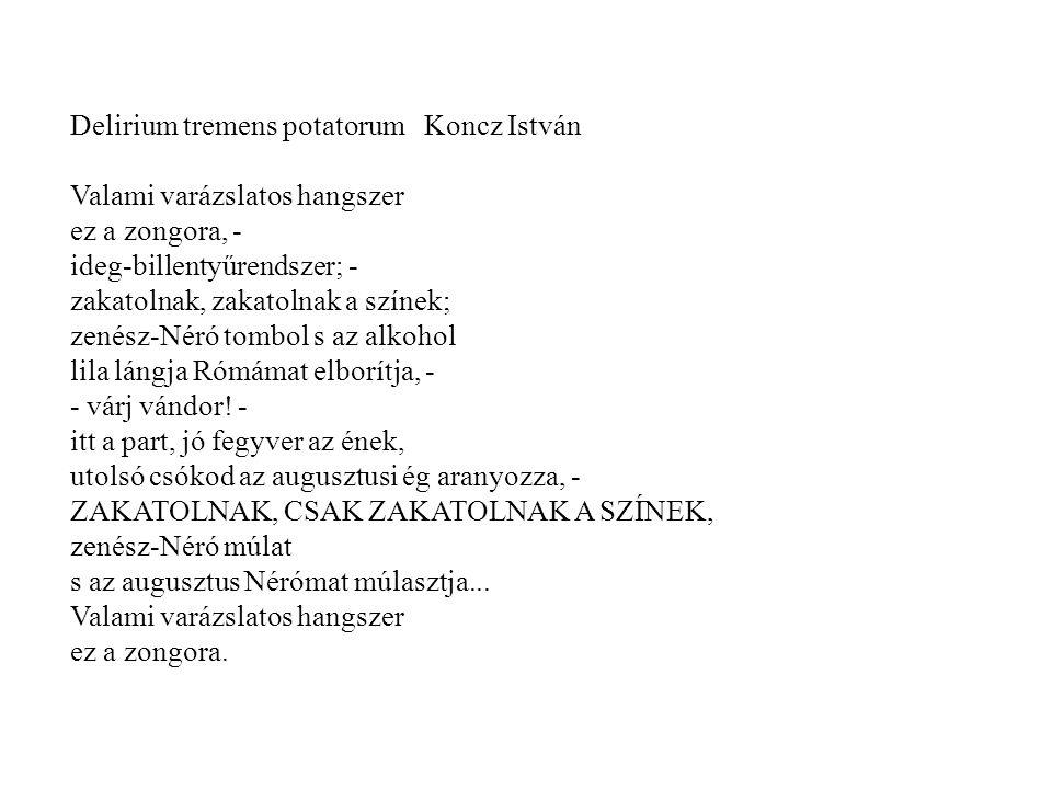 Delirium tremens potatorum Koncz István