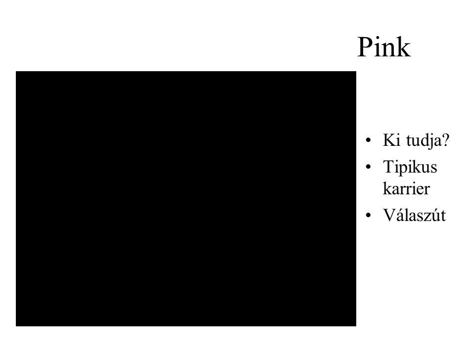 Pink Ki tudja Tipikus karrier Válaszút