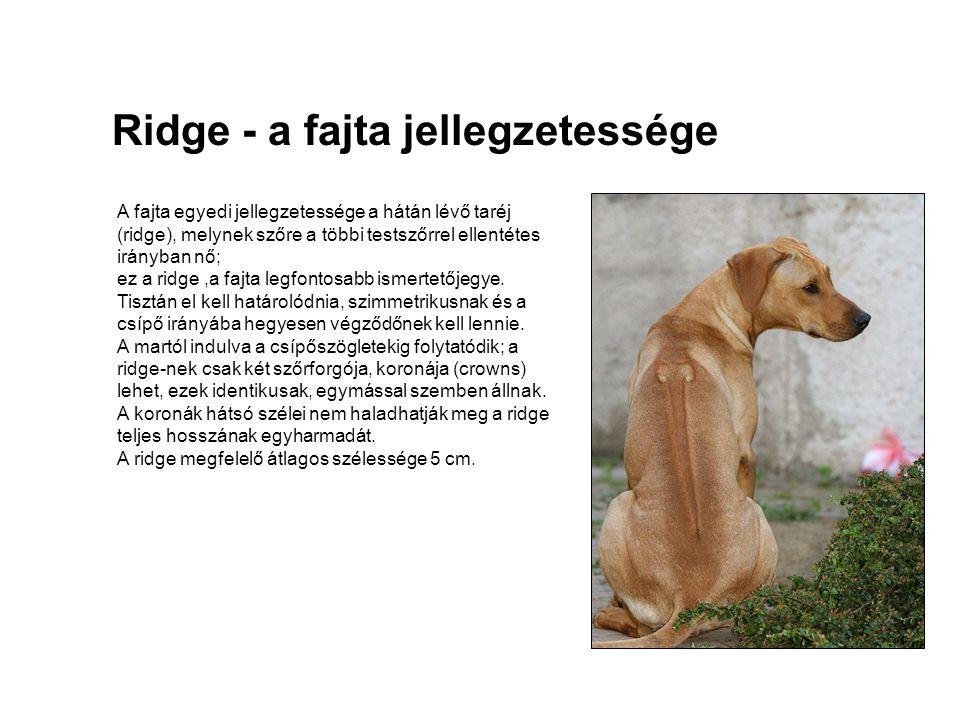 Ridge - a fajta jellegzetessége