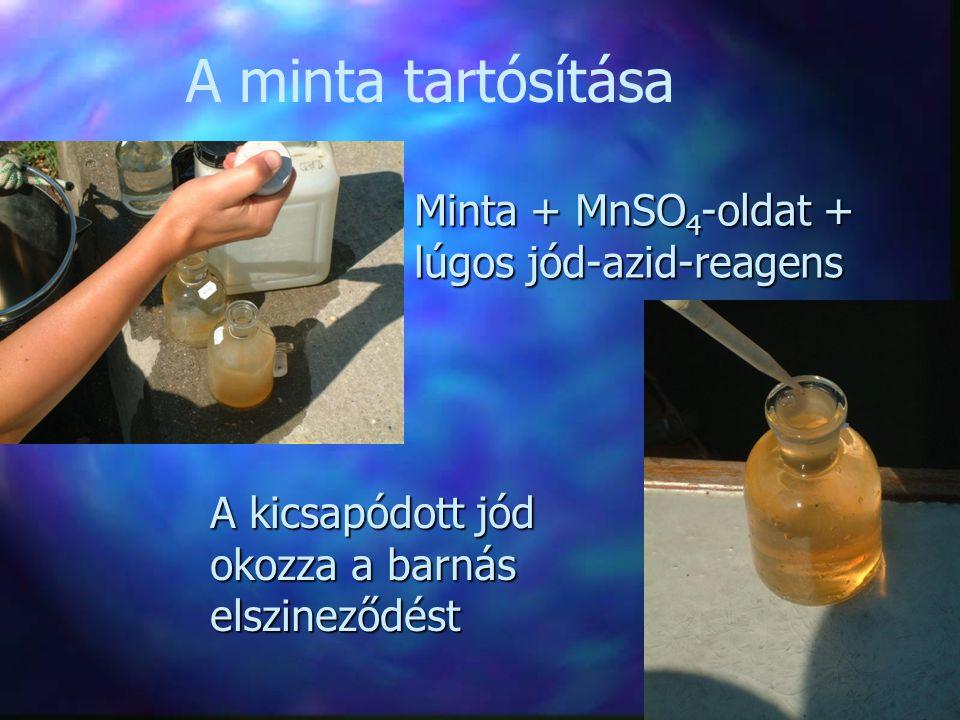 A minta tartósítása Minta + MnSO4-oldat + lúgos jód-azid-reagens