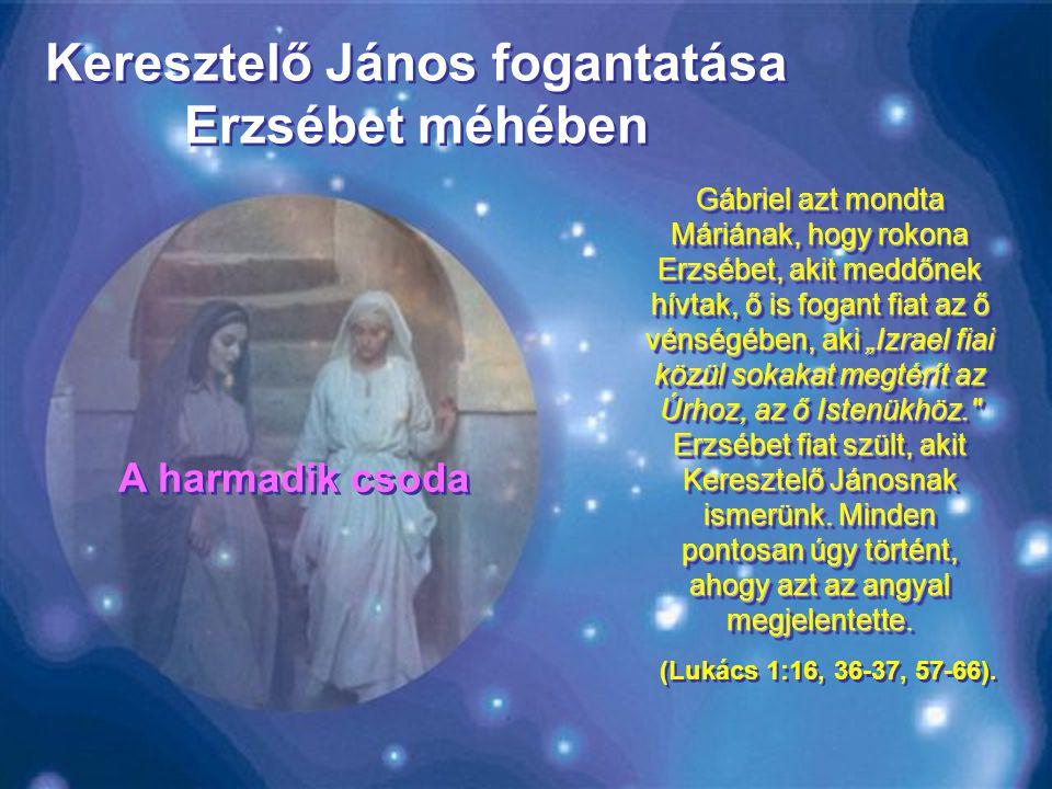 Keresztelő János fogantatása Erzsébet méhében
