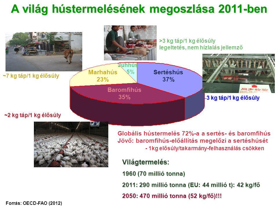 A világ hústermelésének megoszlása 2011-ben
