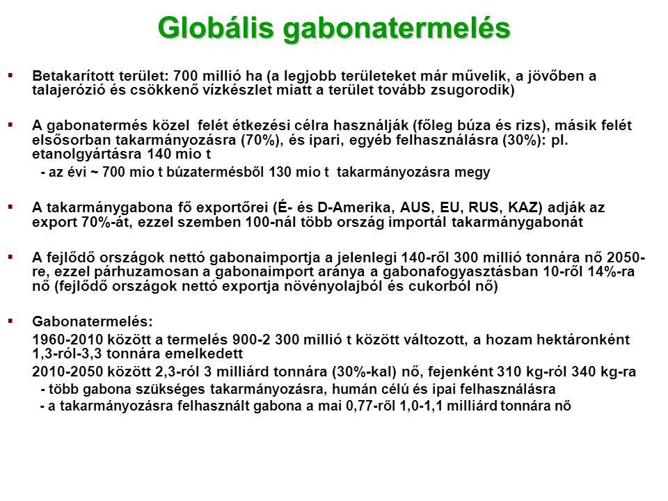 Globális gabonatermelés