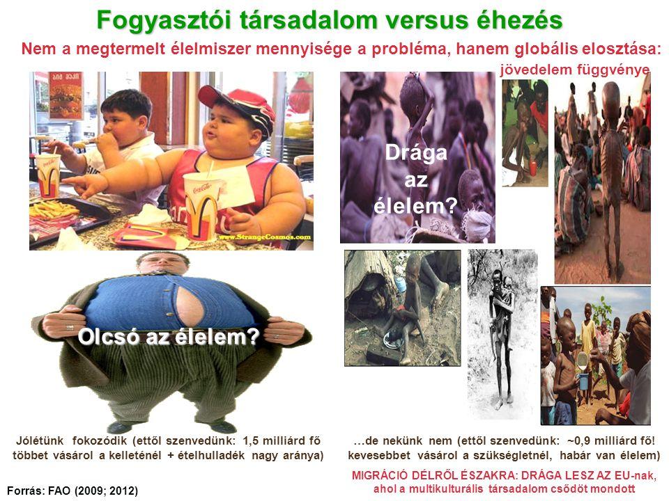 Fogyasztói társadalom versus éhezés