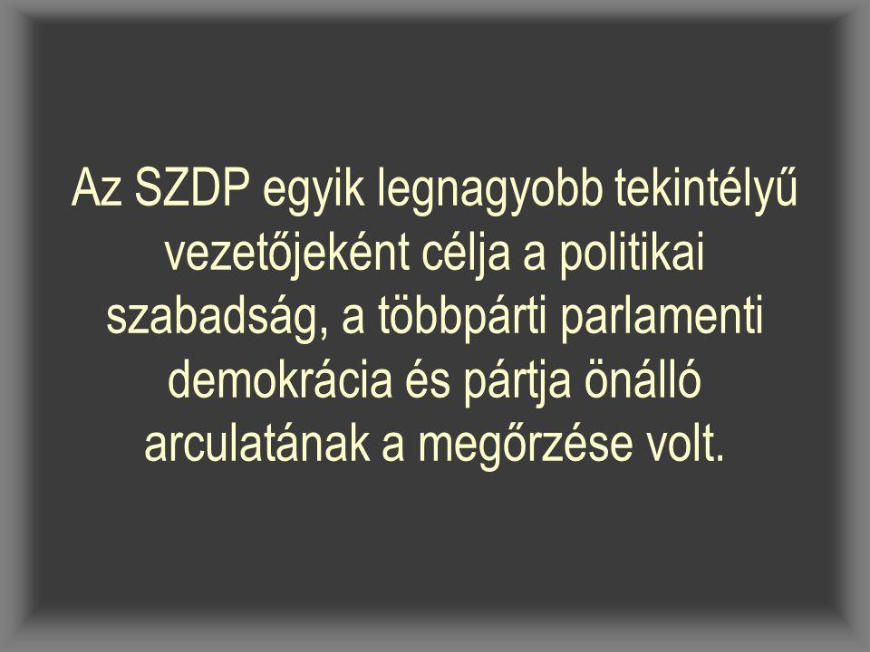 Az SZDP egyik legnagyobb tekintélyű vezetőjeként célja a politikai szabadság, a többpárti parlamenti demokrácia és pártja önálló arculatának a megőrzése volt.