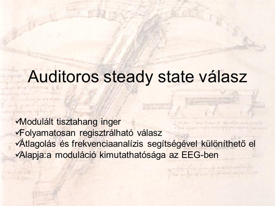 Auditoros steady state válasz