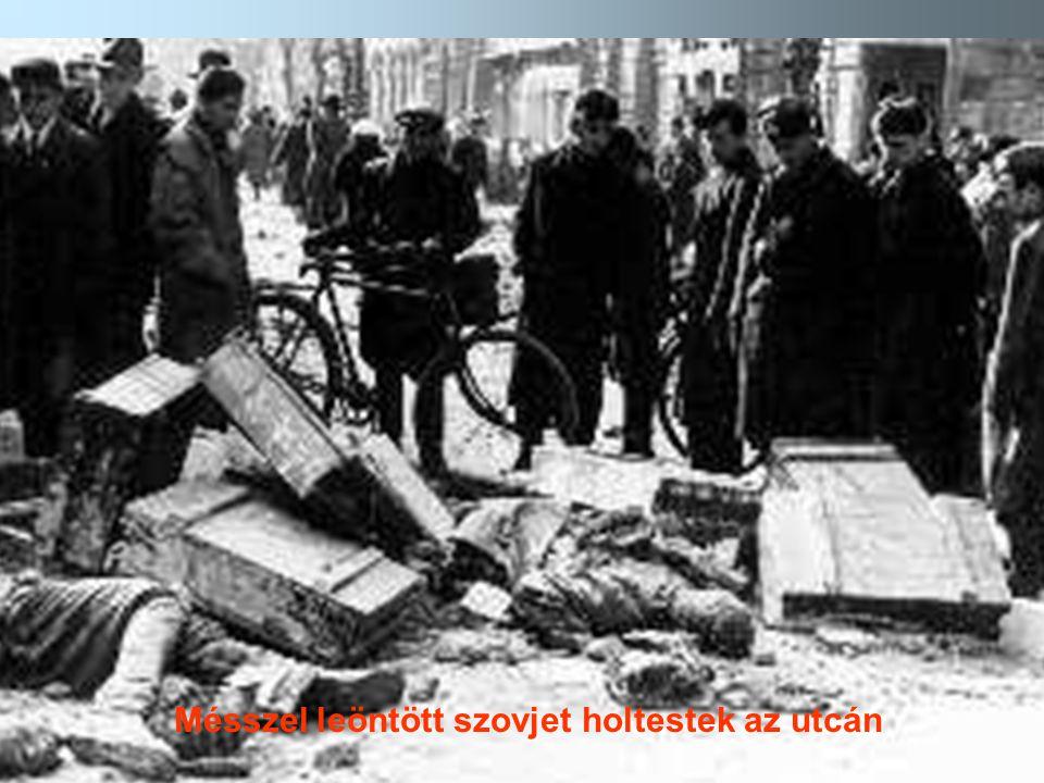 Mésszel leöntött szovjet holtestek az utcán