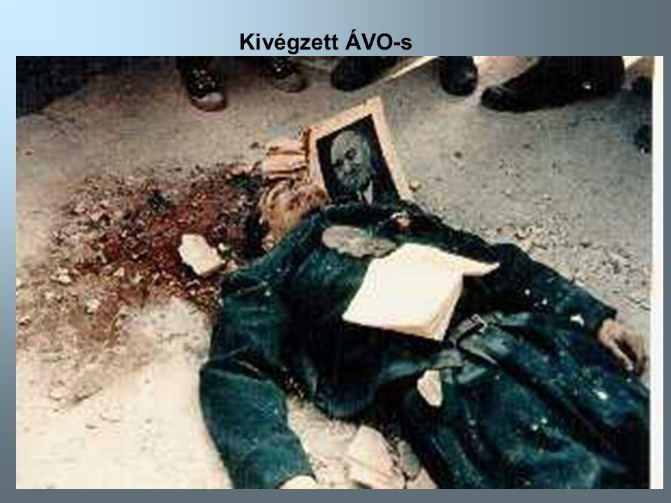 Kivégzett ÁVO-s Kivégzett ÁVO-s