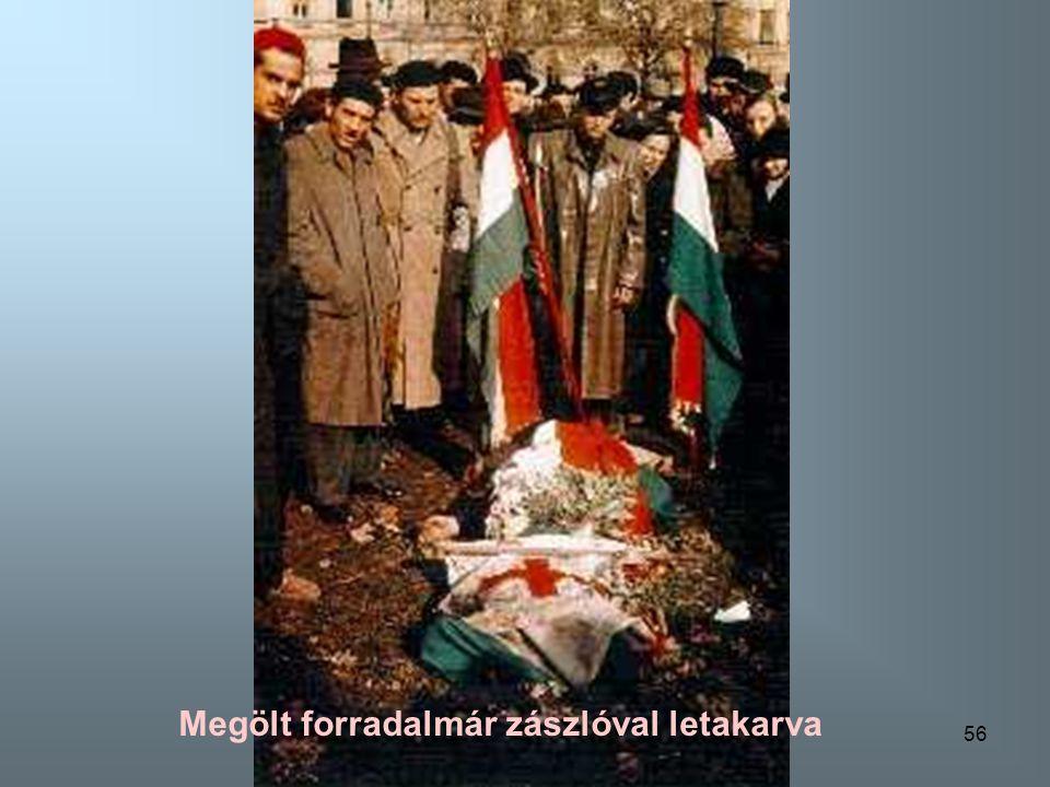 Megölt forradalmár zászlóval letakarva