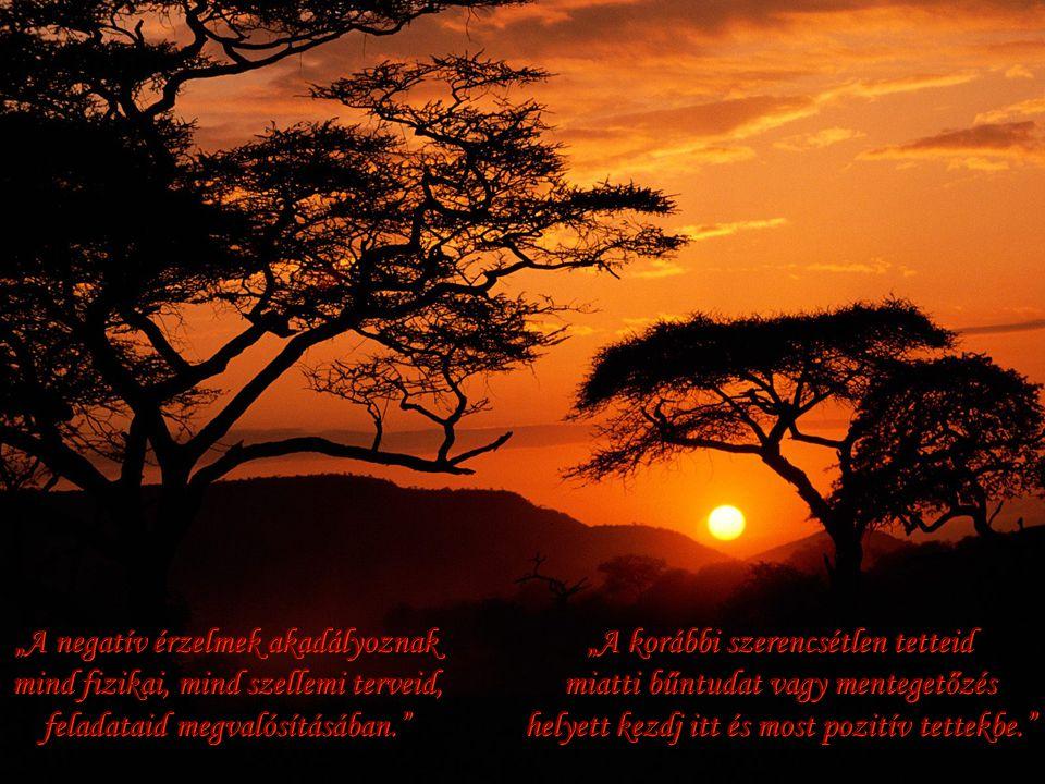 """""""A negatív érzelmek akadályoznak mind fizikai, mind szellemi terveid, feladataid megvalósításában."""