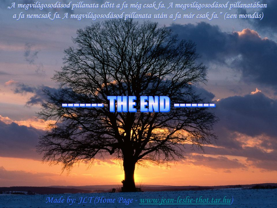 ------- THE END -------