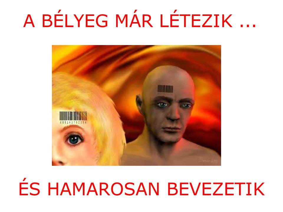 ÉS HAMAROSAN BEVEZETIK
