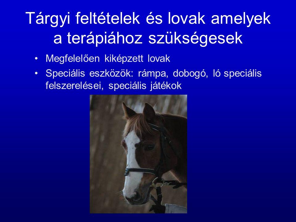 Tárgyi feltételek és lovak amelyek a terápiához szükségesek