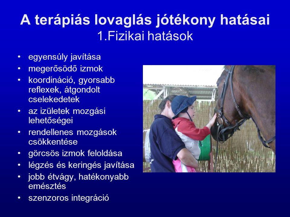 A terápiás lovaglás jótékony hatásai 1.Fizikai hatások