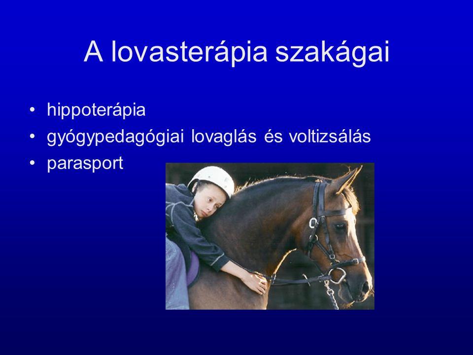 A lovasterápia szakágai