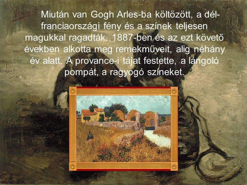 Miután van Gogh Arles-ba költözött, a dél-franciaországi fény és a színek teljesen magukkal ragadták.