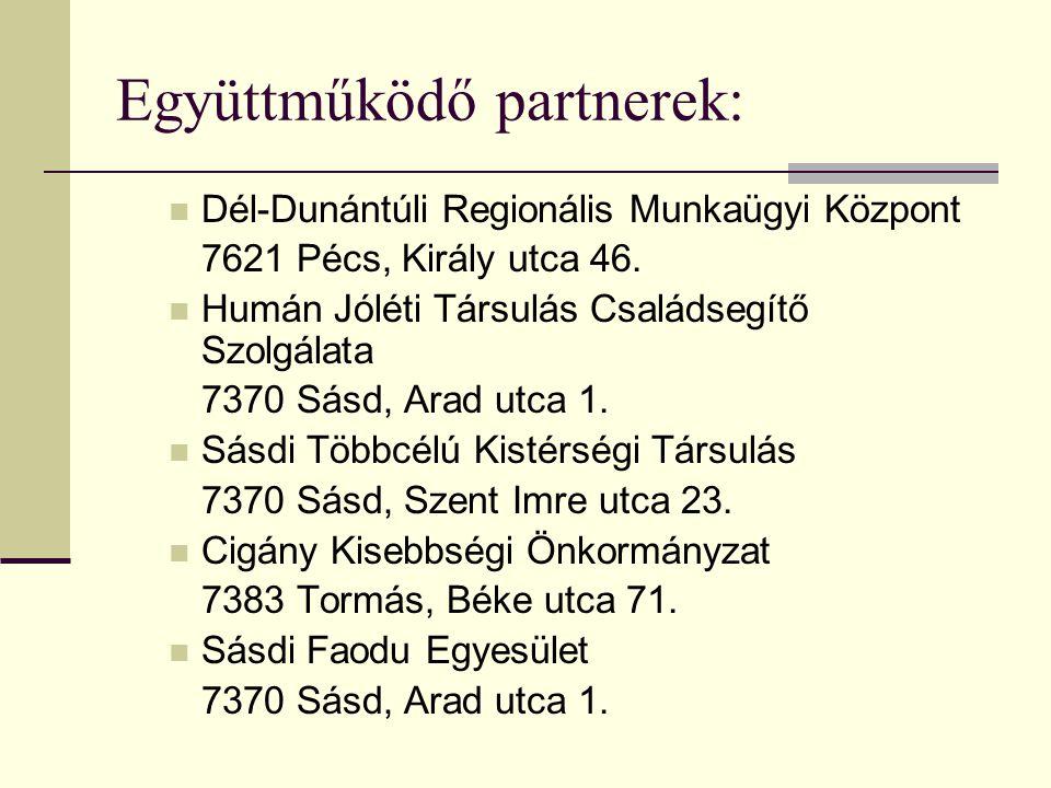Együttműködő partnerek: