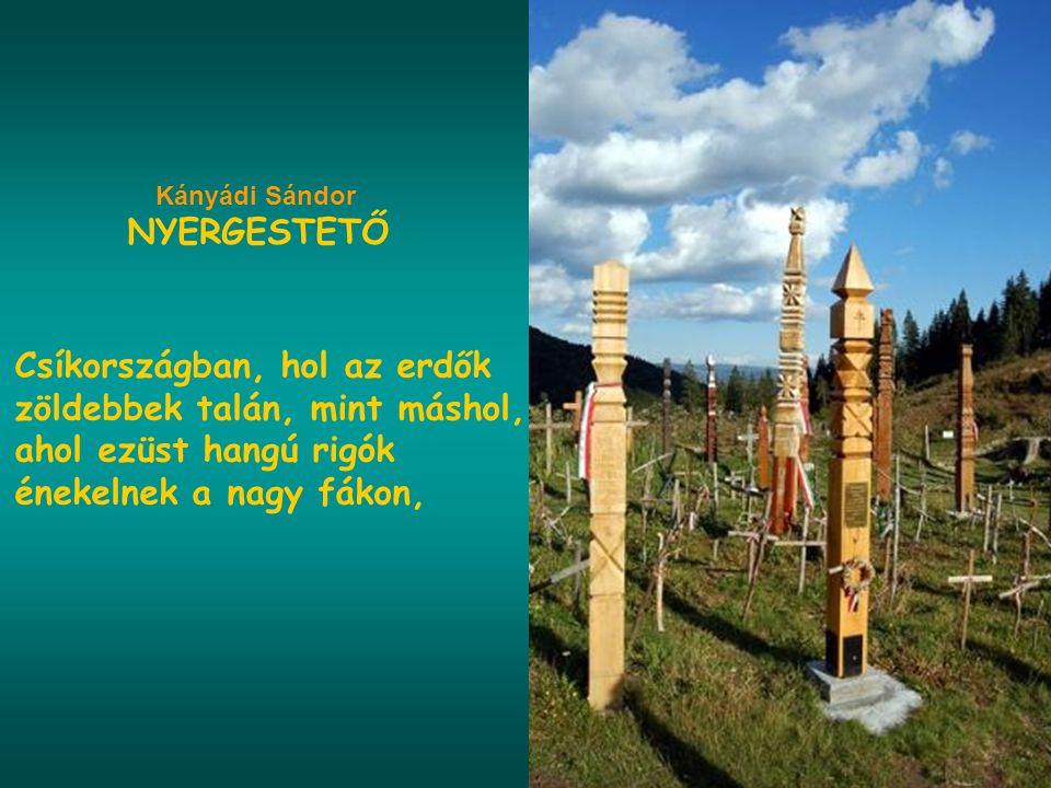 Kányádi Sándor NYERGESTETŐ.