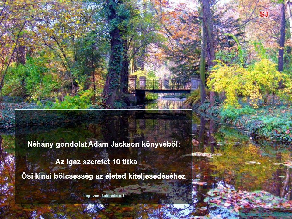 Néhány gondolat Adam Jackson könyvéből:
