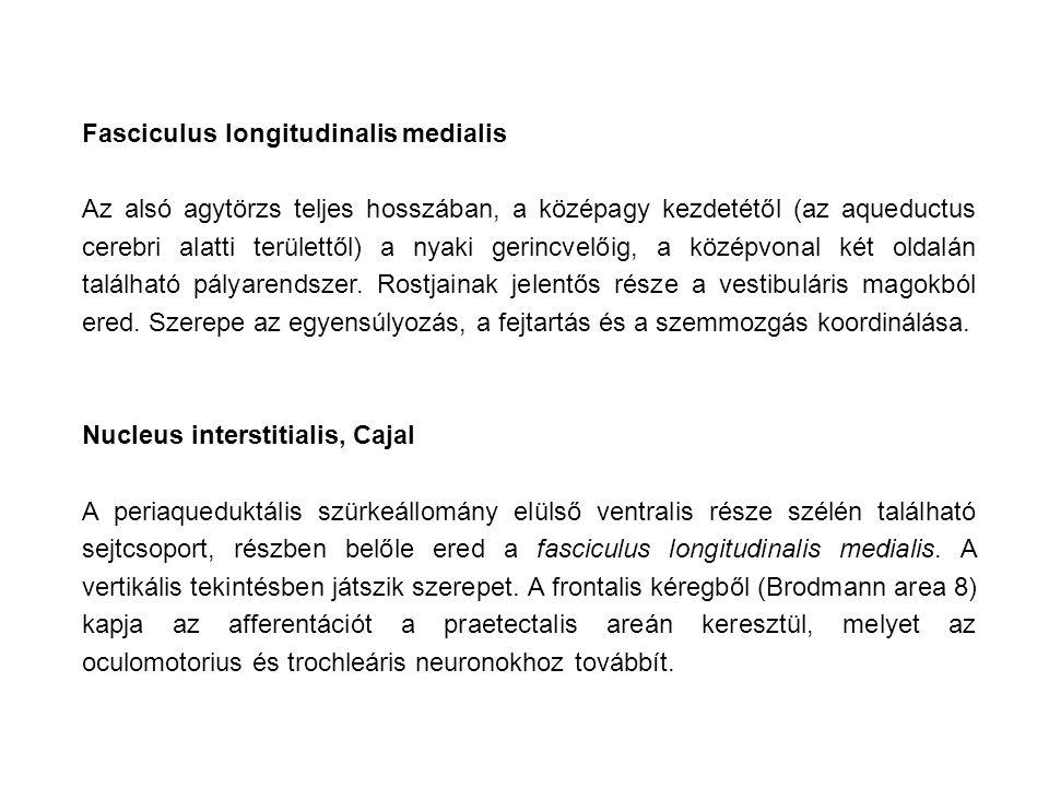 Fasciculus longitudinalis medialis