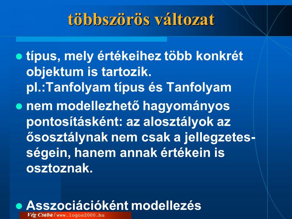 többszörös változat típus, mely értékeihez több konkrét objektum is tartozik. pl.:Tanfolyam típus és Tanfolyam.