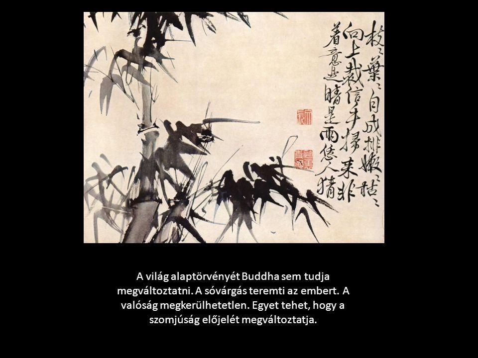 A világ alaptörvényét Buddha sem tudja megváltoztatni