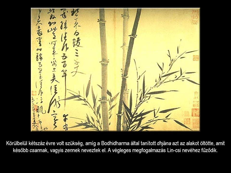 Körülbelül kétszáz évre volt szükség, amíg a Bodhidharma által tanított dhjána azt az alakot öltötte, amit később csannak, vagyis zennek neveztek el.