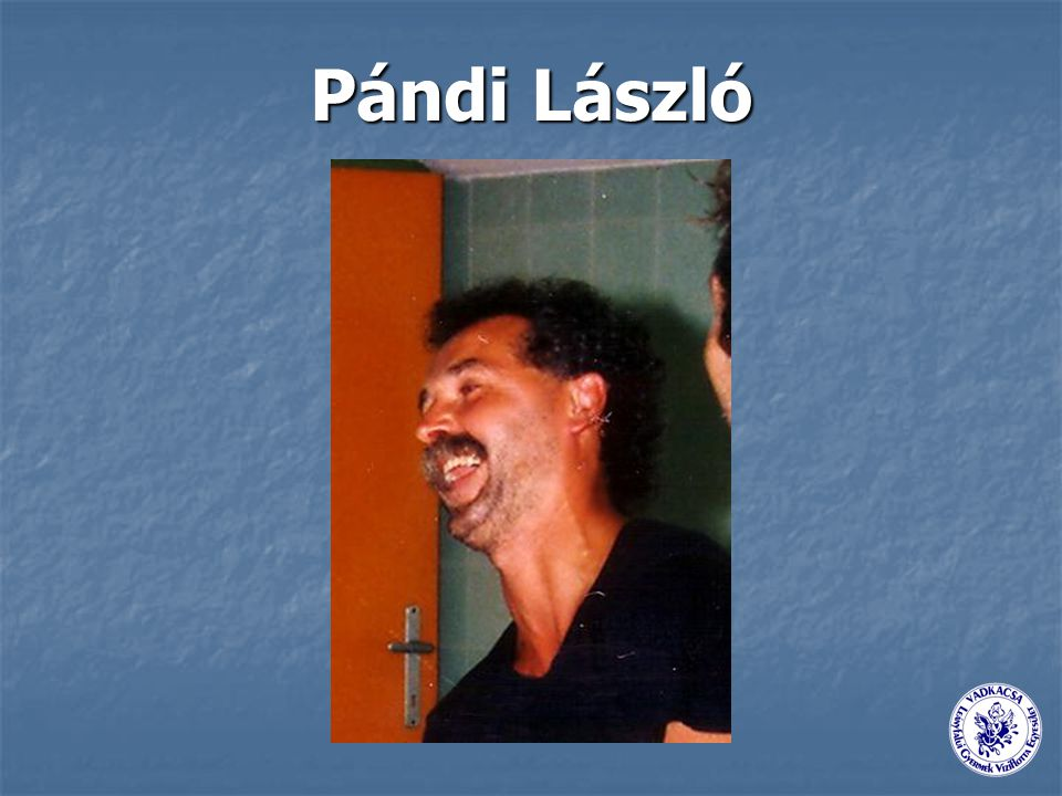 Pándi László