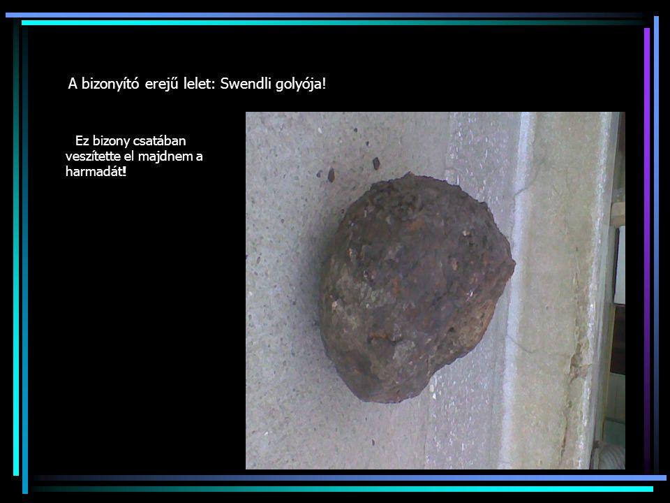 A bizonyító erejű lelet: Swendli golyója!