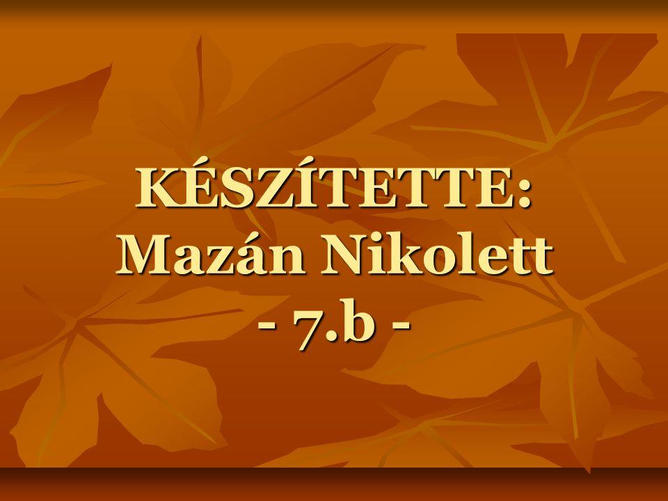 KÉSZÍTETTE: Mazán Nikolett - 7.b -