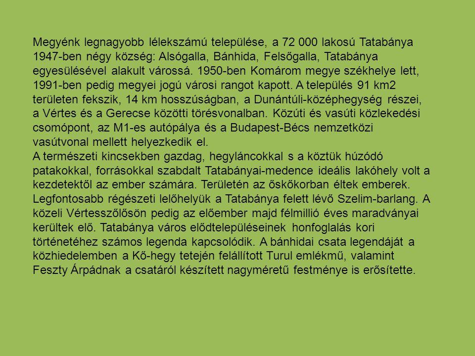 Megyénk legnagyobb lélekszámú települése, a 72 000 lakosú Tatabánya 1947-ben négy község: Alsógalla, Bánhida, Felsőgalla, Tatabánya egyesülésével alakult várossá. 1950-ben Komárom megye székhelye lett, 1991-ben pedig megyei jogú városi rangot kapott. A település 91 km2 területen fekszik, 14 km hosszúságban, a Dunántúli-középhegység részei, a Vértes és a Gerecse közötti törésvonalban. Közúti és vasúti közlekedési csomópont, az M1-es autópálya és a Budapest-Bécs nemzetközi vasútvonal mellett helyezkedik el.