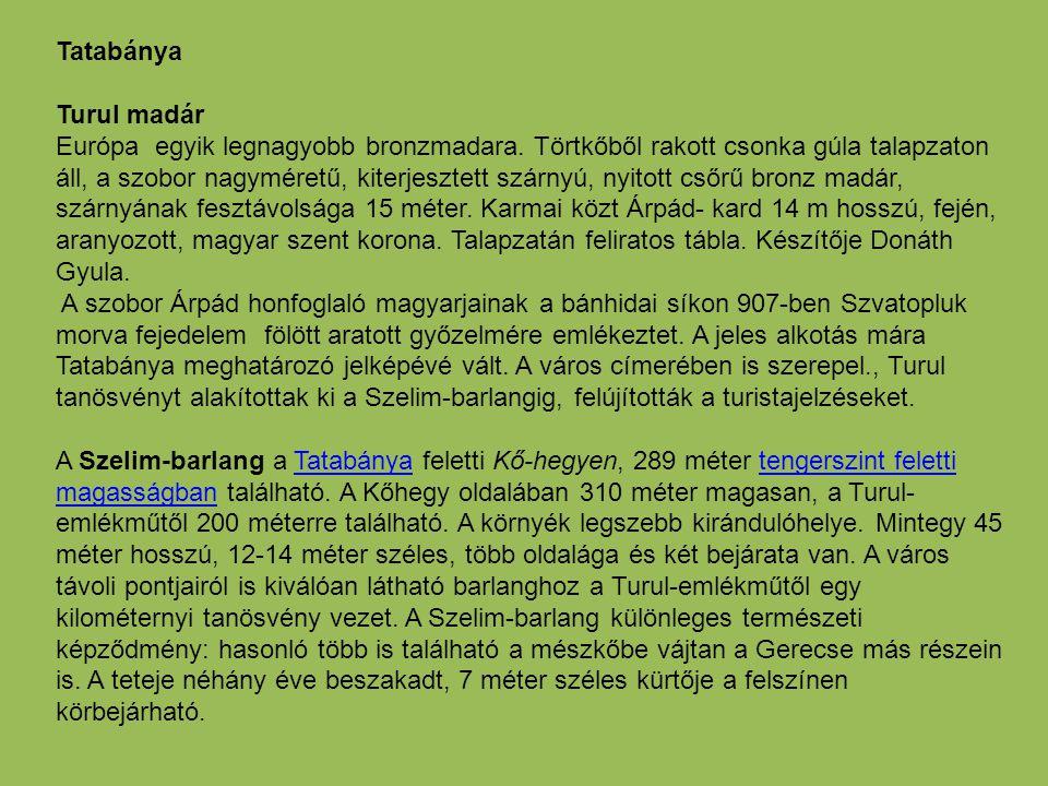 Tatabánya Turul madár.