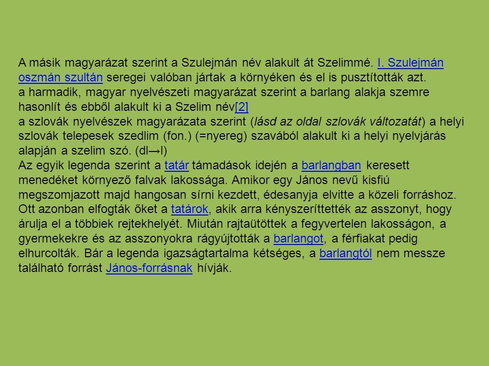 A másik magyarázat szerint a Szulejmán név alakult át Szelimmé. I