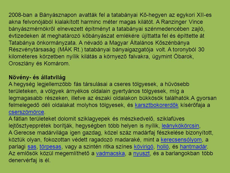 2008-ban a Bányásznapon avatták fel a tatabányai Kő-hegyen az egykori XII-es akna felvonójából kialakított harminc méter magas kilátót. A Ranzinger Vince bányászmérnökről elnevezett építményt a tatabányai szénmedencében zajló, évtizedeken át meghatározó kőbányászat emlékére újíttatta fel és építtette át Tatabánya önkormányzata. A névadó a Magyar Általános Kőszénbánya Részvénytársaság (MÁK Rt.) tatabányai bányaigazgatója volt. A toronyból 30 kilométeres körzetben nyílik kilátás a környező falvakra, úgymint Óbarok, Oroszlány és Komárom.
