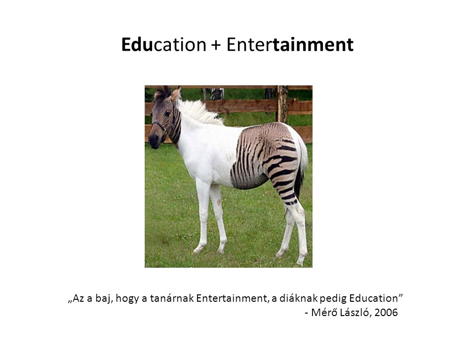 Education + Entertainment