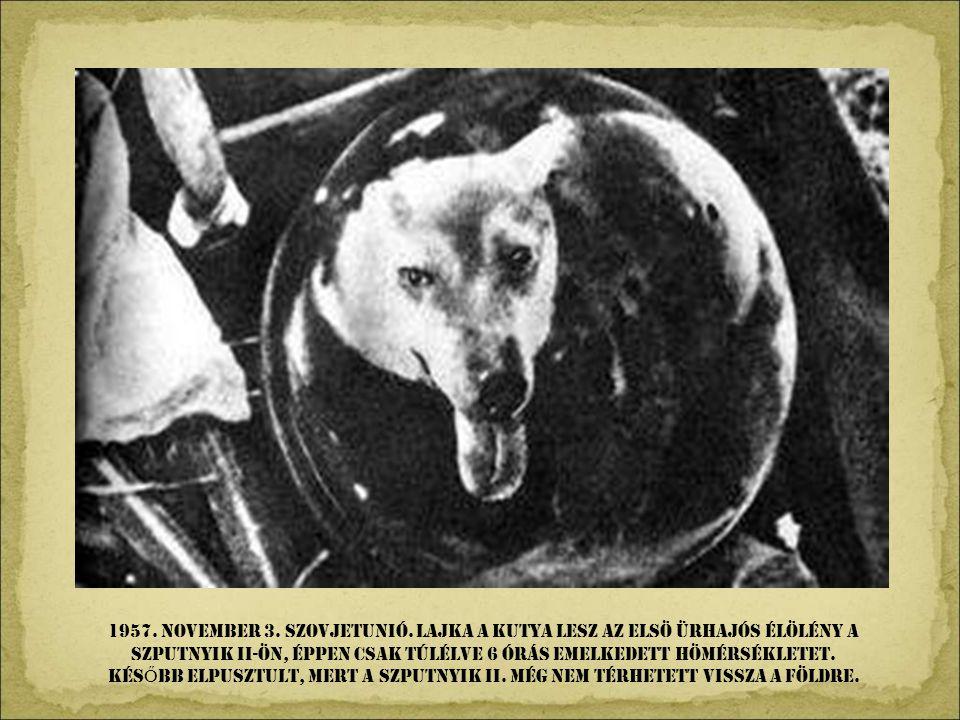 1957. NOVEMBeR 3. Szovjetunió. Lajka a kutya lesz az elsö ürhajós élölény a Szputnyik II-ön, éppen csak túlélve 6 órás emelkedett hömérsékletet.