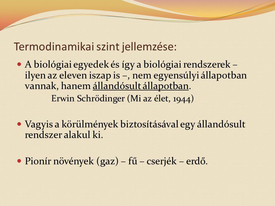 Termodinamikai szint jellemzése: