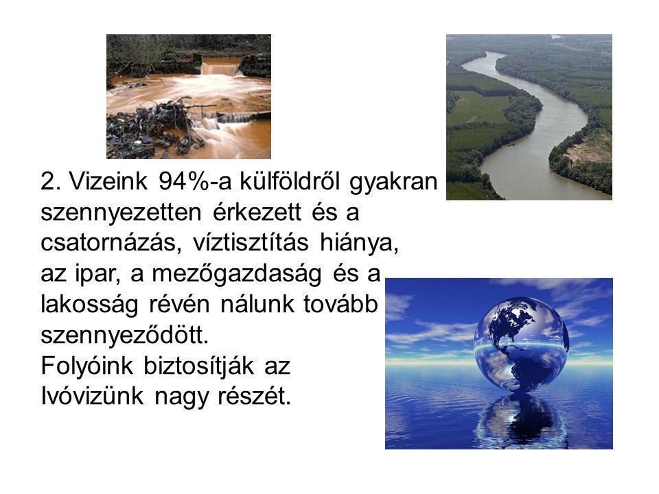 2. Vizeink 94%-a külföldről gyakran