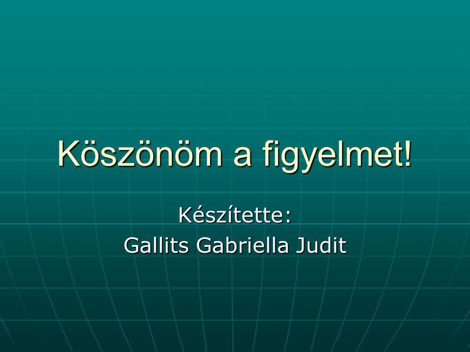 Készítette: Gallits Gabriella Judit
