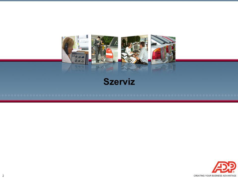 Szerviz 2