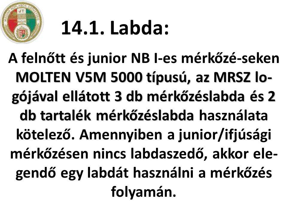 14.1. Labda:
