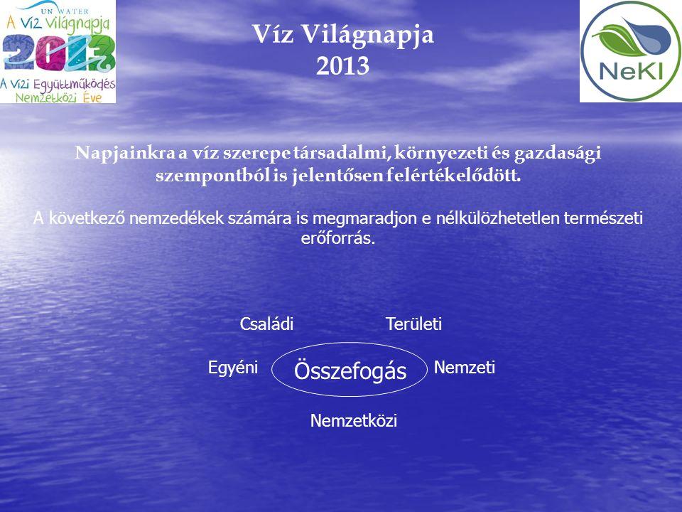 Víz Világnapja 2013 Összefogás